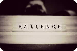patience (steer-blog.com)